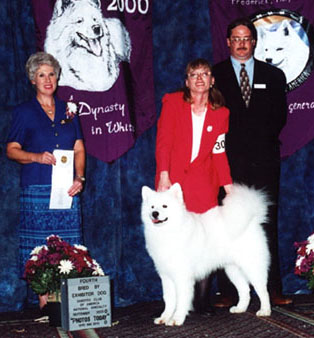 4th in BBE at SCA 2000 under breeder judge Lynette Blue